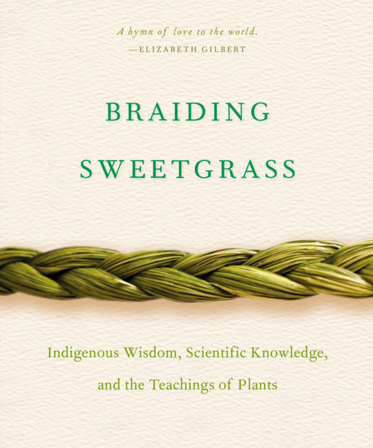 braiding sweetgrass book
